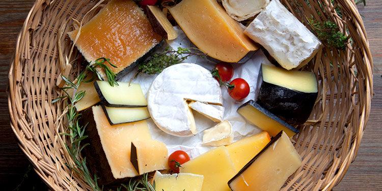 Сырное производство «РОТА-АГРО»